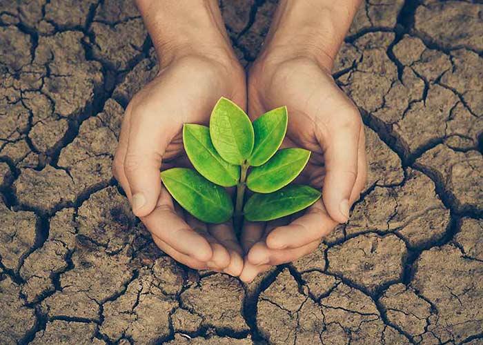 Schonung der Umwelt